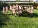 Танцов състав на СОУ